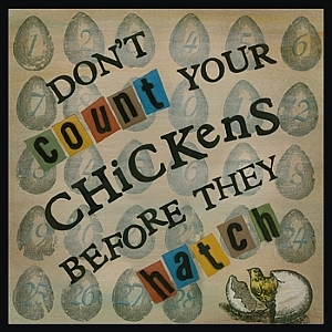 dont-count-your-chickens